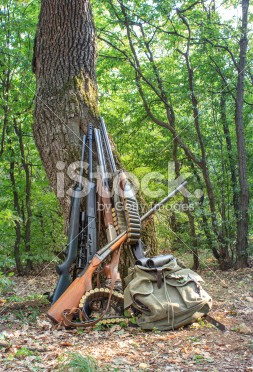stock-photo-42892676-hunting-rifles-and-accessories-backed-against-a-tree-in-a-forest[1]