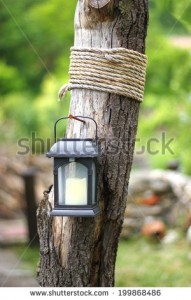 stock-photo-garden-decoraion-idea-solar-lantern-on-a-driftwood-with-rope-199868486[1]